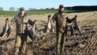 chasse ecosse