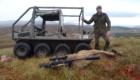 ecosse chasse cerf