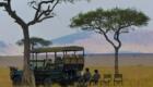 safari photo tanzanie avec constant boulard international adentures